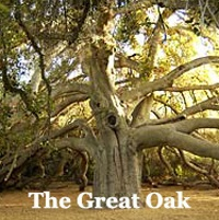 GreatOak200x201